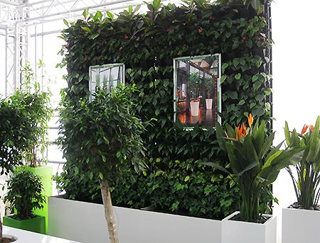 Objekt- und Bürobegrünung mit Pflanzenwänden